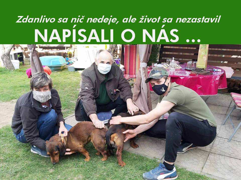 Read more about the article Napísali o nás